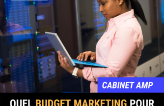 budget marketing